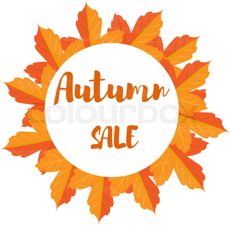 800x782 Autumn Foliage Vector Sale Banner. Autumn Leaves In A Circle