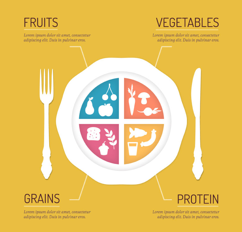 773x743 Healthy Eating Plate Vector Illustr