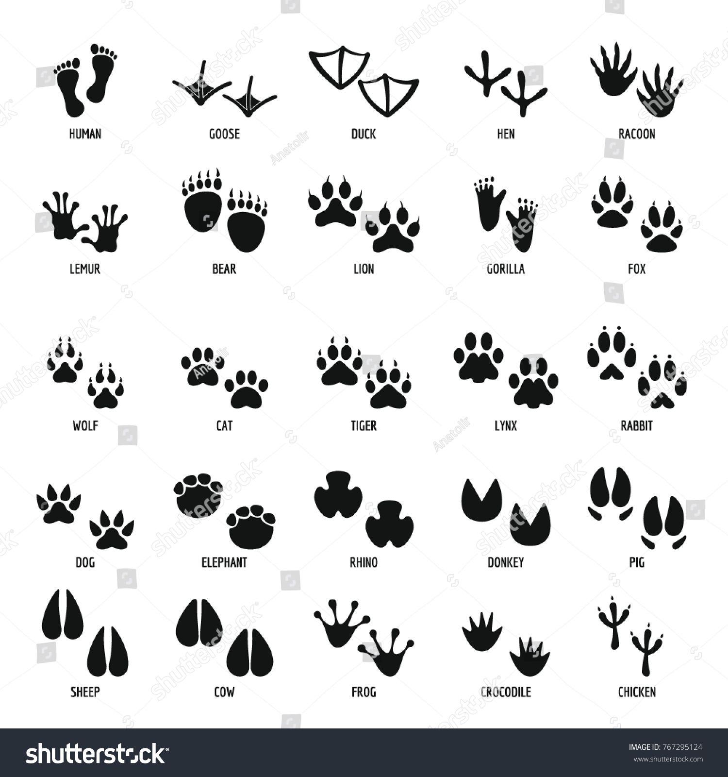 1500x1600 Animal Footprint Icons Set. Simple Illustration Of 25 Animal
