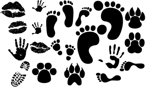 575x344 Footprints In Sand Free Vector Download (257 Free Vector) For