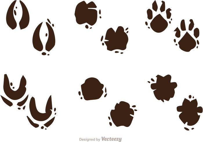 700x490 Muddy Animal Footprint Vectors Free Vectors Ui Download