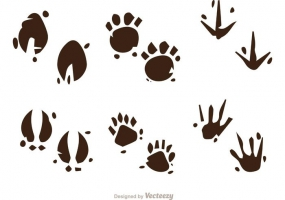 285x200 Animal Footprints Free Vector Graphic Art Free Download (Found