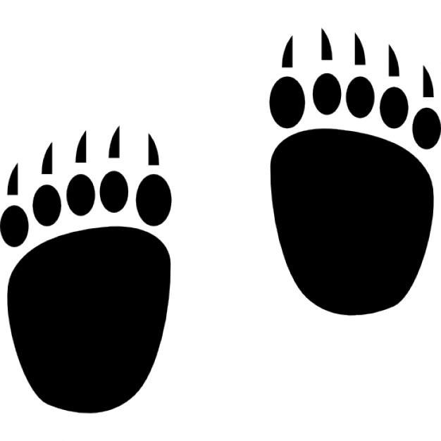 626x626 Bear Footprint Group With Items