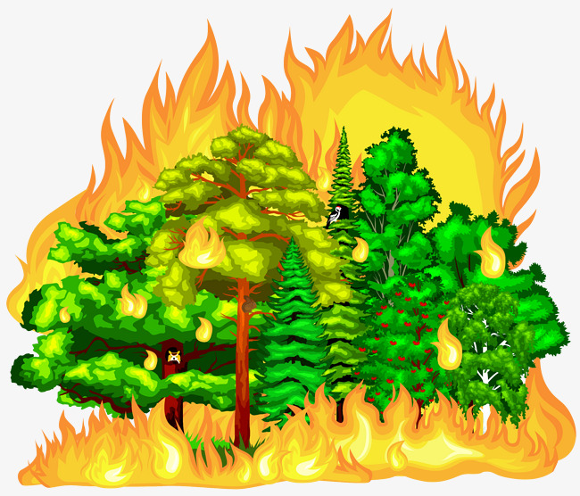 The best free Forest vector images  Download from 465 free
