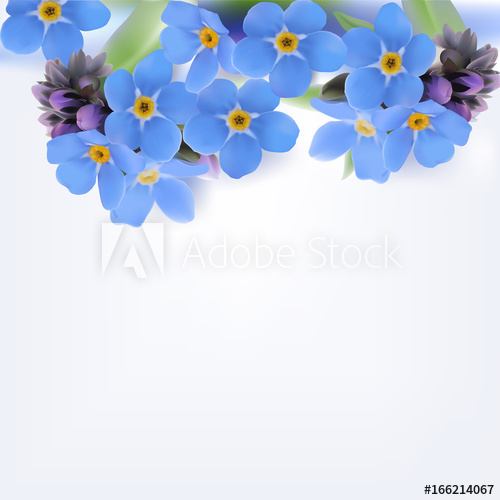 500x500 Forget Me Not. Vector Background. Hand Drawn Illustration Of Blue