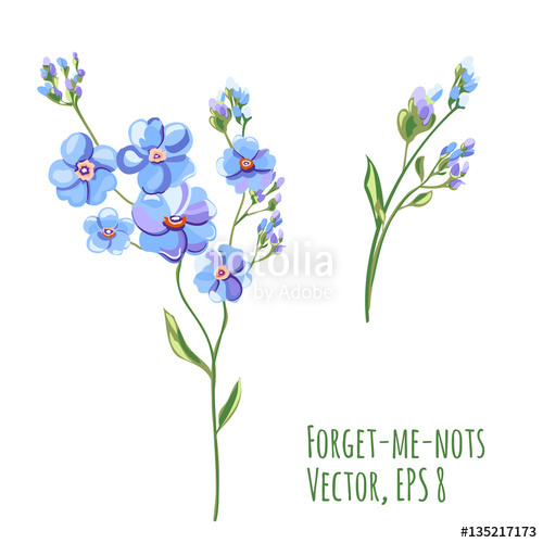 500x500 Set Of Blue Flowers And Buds, Forget Me Not, Stem And Leaves On