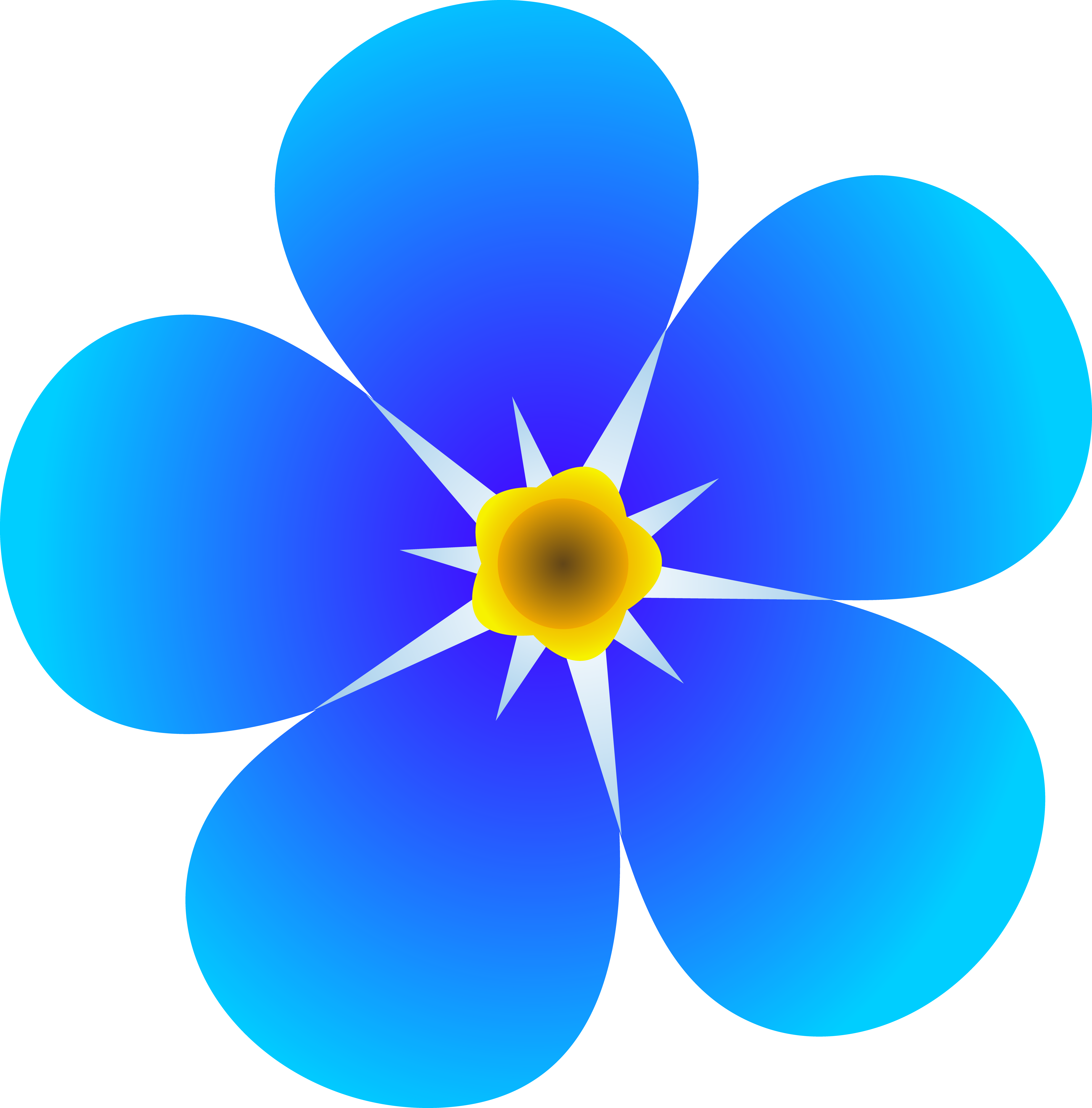 5874x5959 Single Forget Me Not Flower