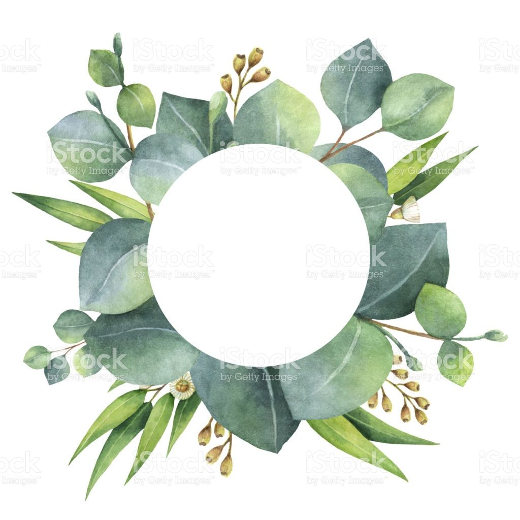 1024x1024 Watercolor Hand Painted Round Wreath With Eucalyptus Leaves And