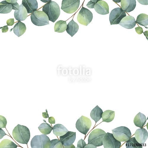 500x500 Watercolor Vector Green Floral Card With Silver Dollar Eucalyptus