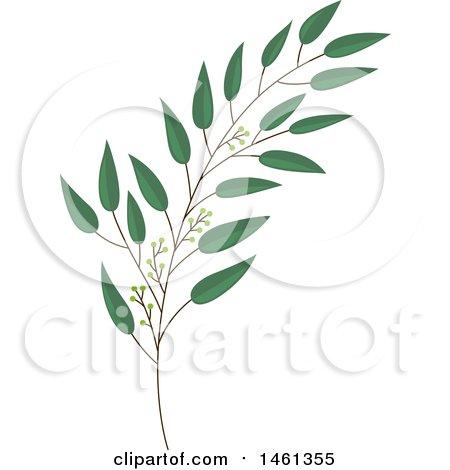 450x470 Clipart Of A Green Eucalyptus Branch