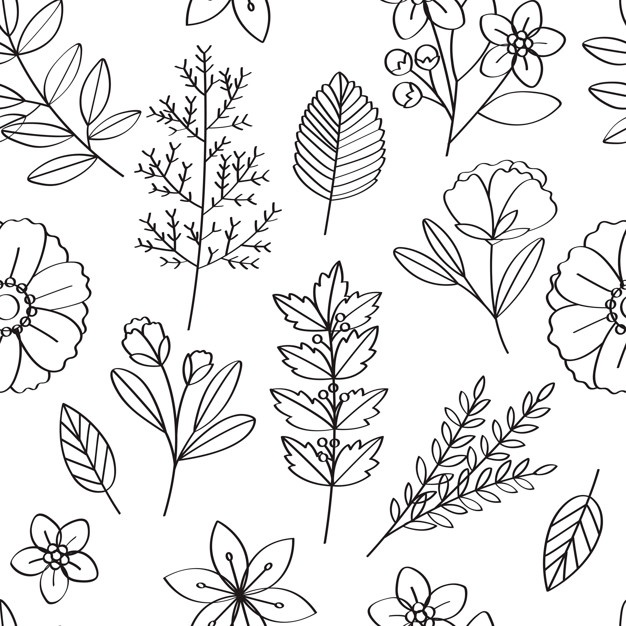 626x626 Flower Illustration Vectors, Photos And Psd Files Free Download