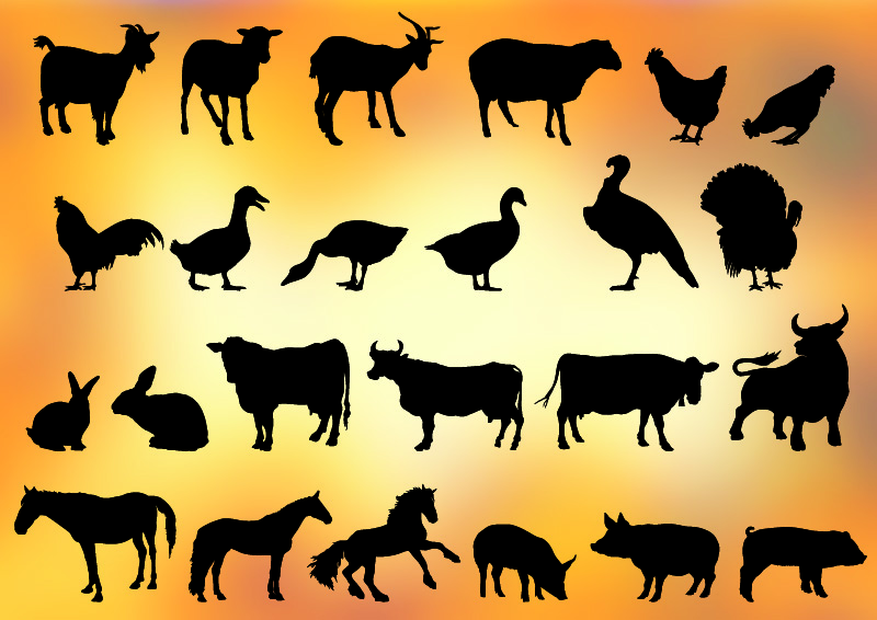 Free Vector Farm Animals