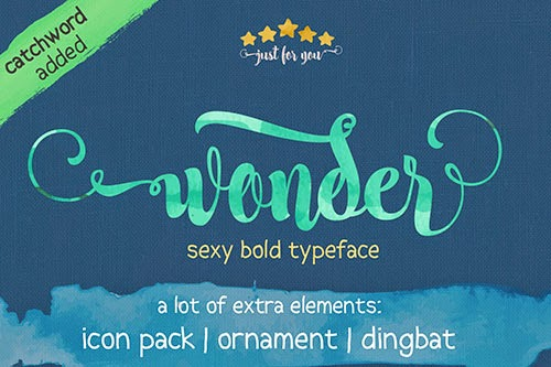 500x333 Nice Wonder Script Font