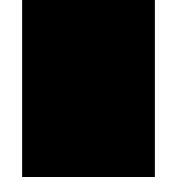 256x256 Clipboard List Icon Glyph
