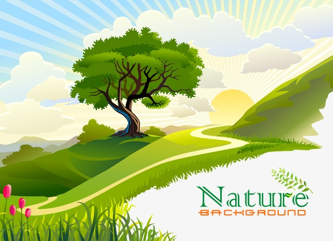 650x471 Cartoon Nature, Cartoon Vector, Nature Vector, Meadow Png And
