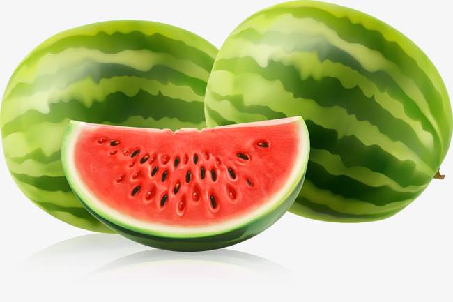 Free Vector Watermelon