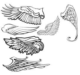 Free Vector Wings