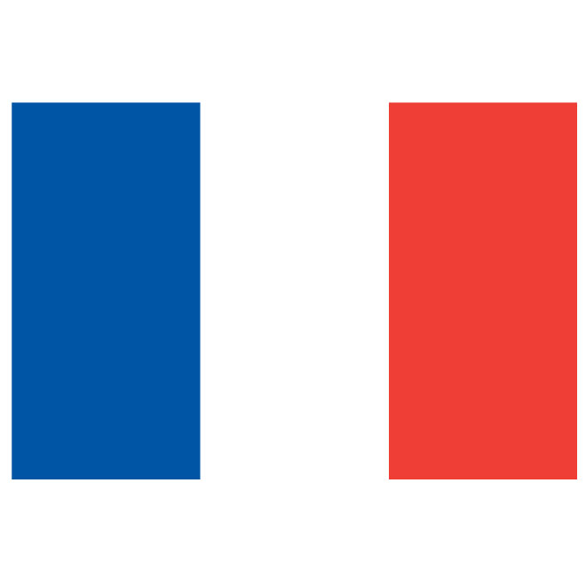 660x660 French Flag