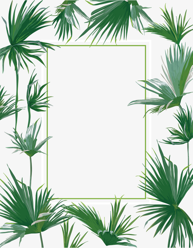 650x837 Summer Plant Fresh Vector Border, Summer Vector, Plant Vector