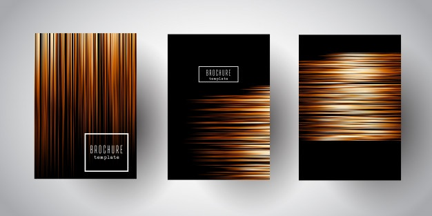 626x313 Fringe Vectors, Photos And Psd Files Free Download