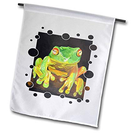 Frog Vector Images