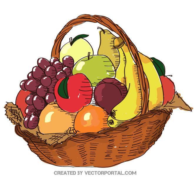 660x660 Fruit Basket Illustration Free Vector 123freevectors