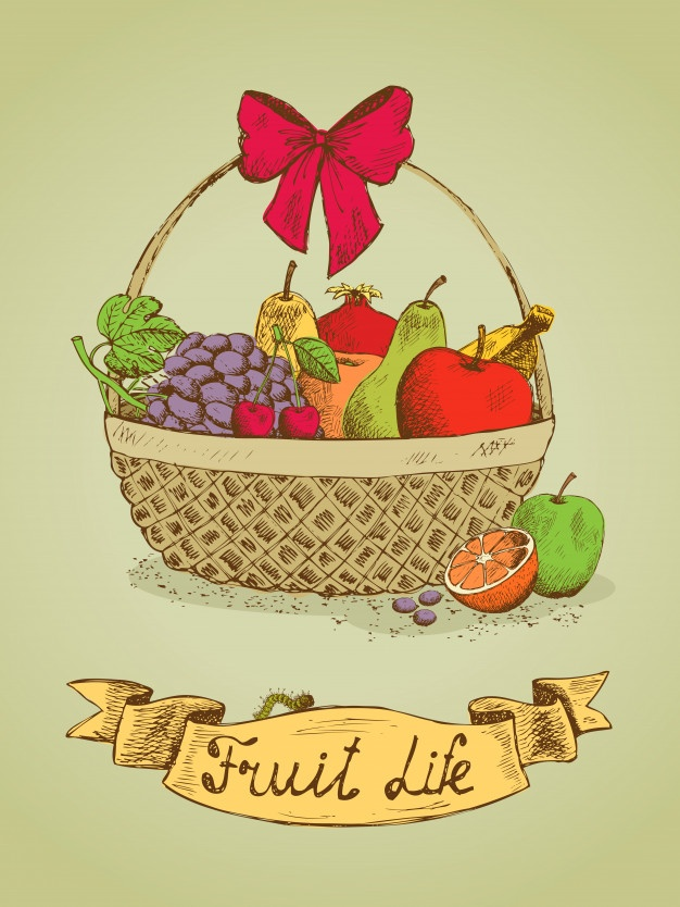 626x834 Fruit Basket Vectors, Photos And Psd Files Free Download