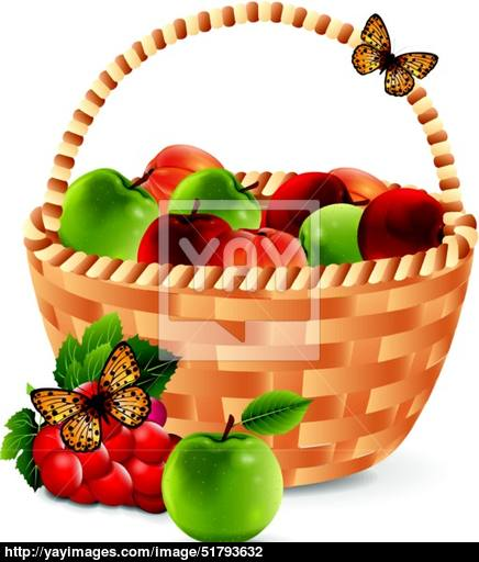 436x512 Fruit Basket Vector