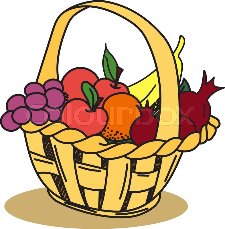 786x800 Fruit Basket Apple, Grape, Banana, Pomegranate. Hand Drawn, Doodle