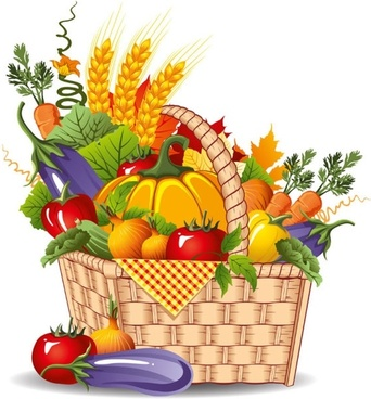 342x368 Fruit Basket Free Vector Download (2,555 Free Vector) For