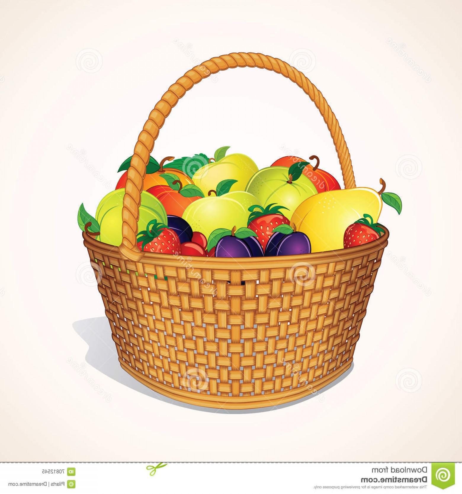 1560x1668 Stock Illustration Organic Garden Fruits Basket Vector Orchand