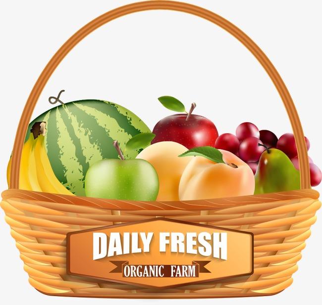 650x616 Vector Fruit Basket, Fruit Vector, Fruit Clipart, Fruit Png And