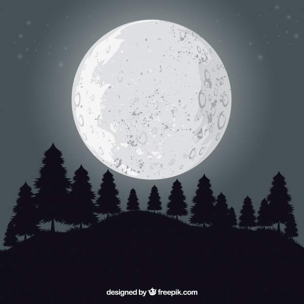 626x626 Full Moon Vectors, Photos And Psd Files Free Download