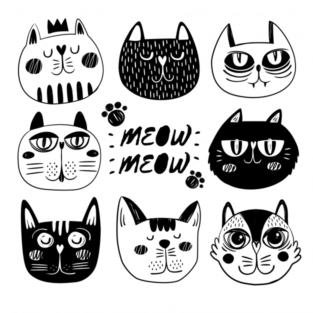 626x626 Funny Cat Faces Collection Vector Free Download
