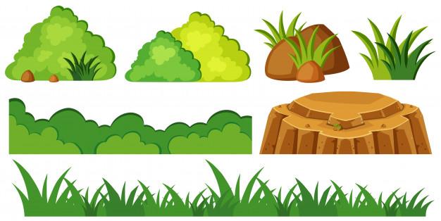 626x314 Grass And Rocks In Garden Vector Premium Download