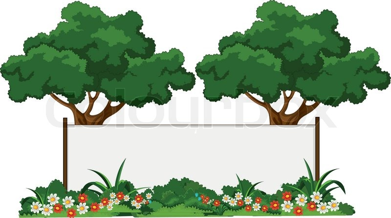 800x446 Vector Illustration Of Beautiful Garden And Various Plants With