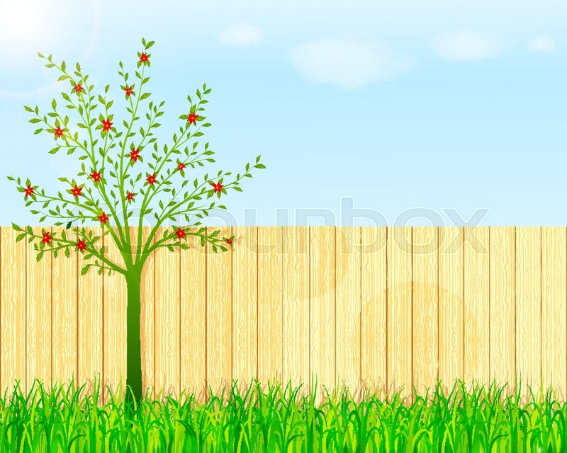800x640 Backyard Garden Vector Background Stock Vector Colourbox