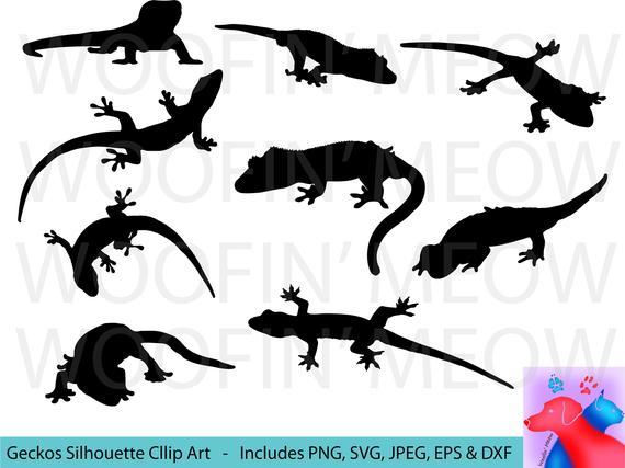 570x427 Gecko Svg Clipart Gecko Silhouette Gecko Decal Gecko Vector Etsy