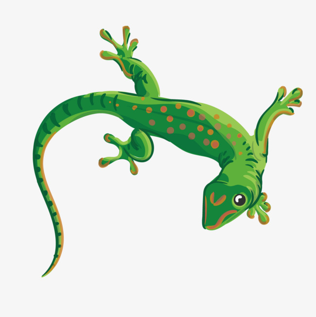 650x651 Vector Green Gecko, Animal, Green, Hand Painted Png And Vector For