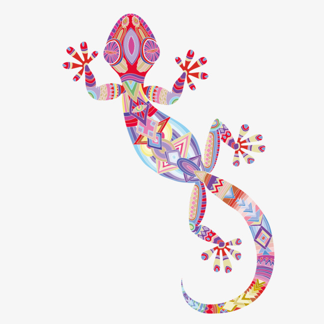 650x651 Color Gecko, Color Vector, Color, Gecko Png And Vector For Free