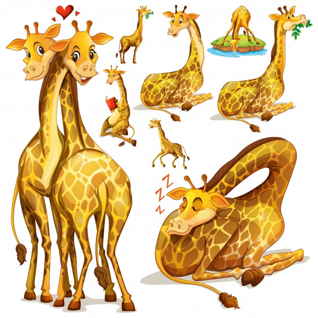 626x626 Giraffe Pattern Vectors, Photos And Psd Files Free Download