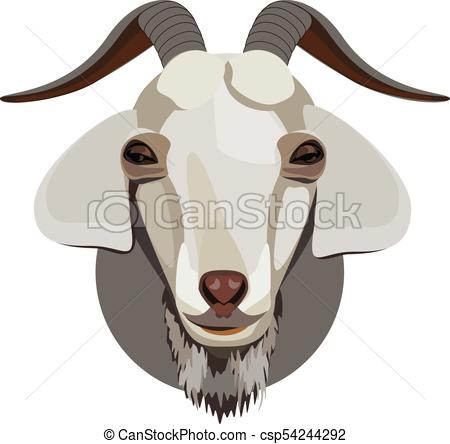 450x444 Male Goat Head. Male Goat Head With Horns And A Beard.