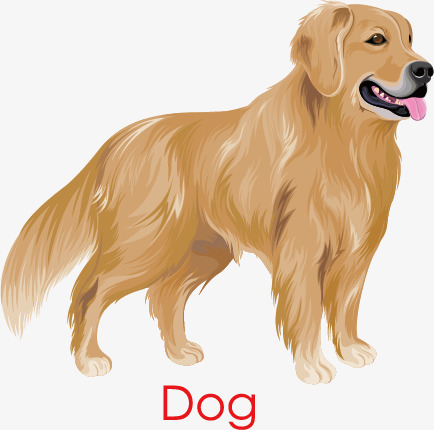 434x430 Golden Retriever Dog, Dog Clipart, Golden, Hand Painted Png And