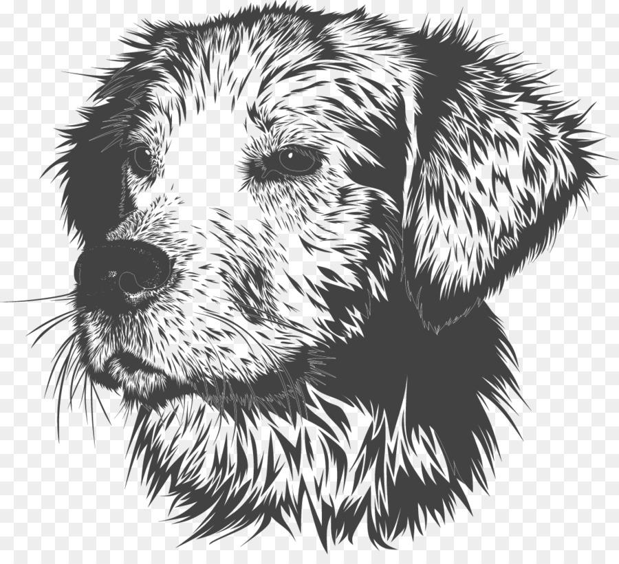 900x820 Golden Retriever Puppy Dog Training Pet Veterinarian