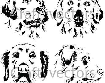 Golden Retriever Vector At Getdrawings Com Free For Personal Use
