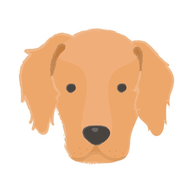 626x626 Retriever Vectors, Photos And Psd Files Free Download