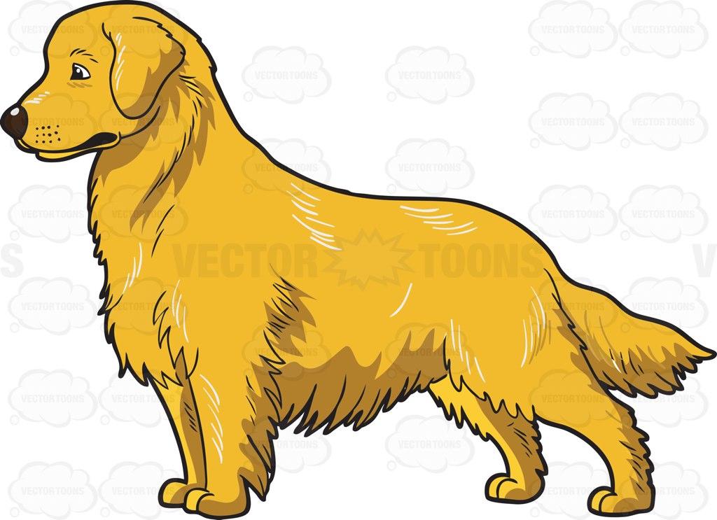 1024x743 An Adorable Golden Retriever Clipart By Vector Toons