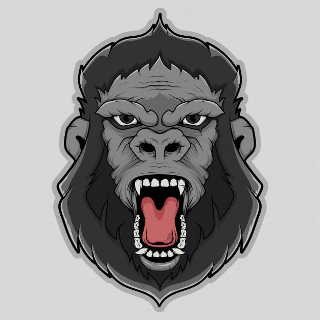626x626 Gorilla Face Vector Illustration Vector Premium Download