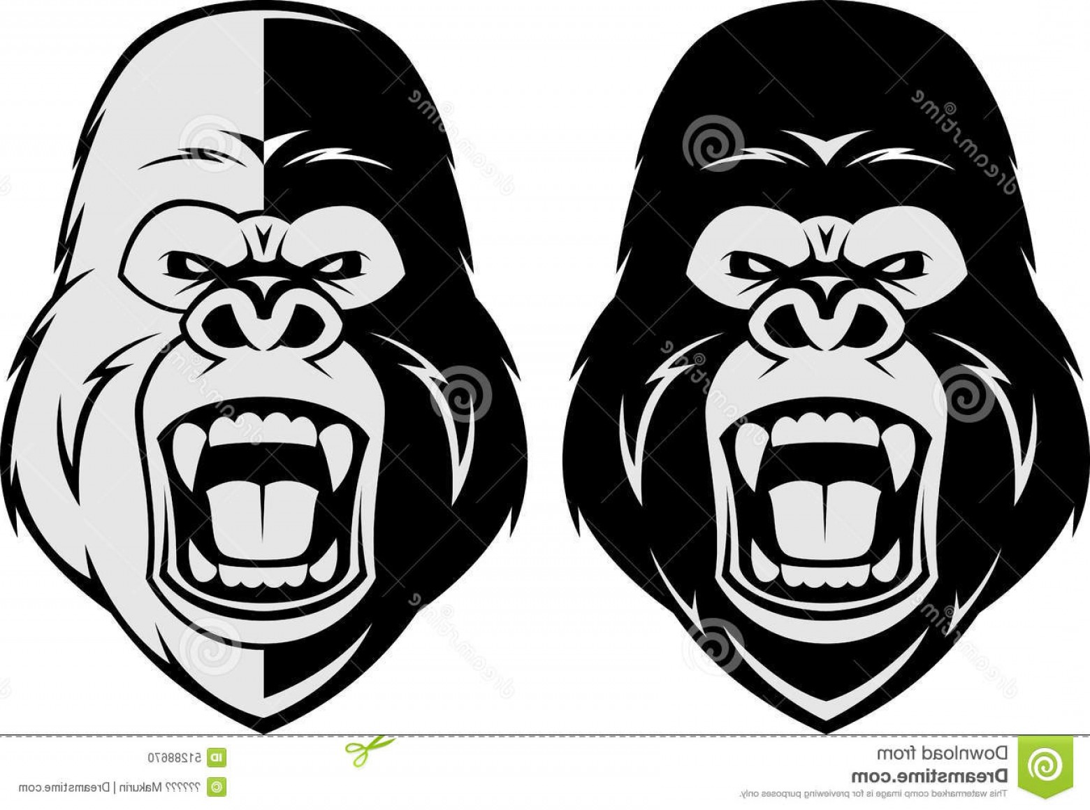 1560x1159 Stock Illustration Angry Gorilla Head Vector Illustration Evil