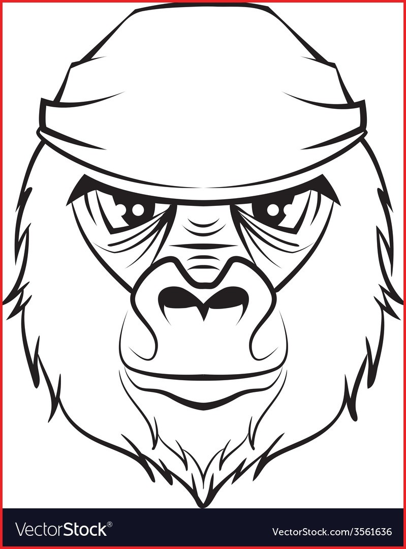 799x1080 Gorilla Drawing 153724 Gorilla Head Black And White Drawing